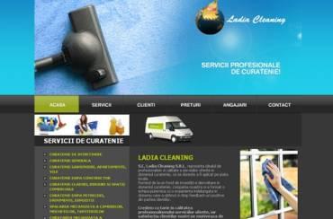 www.curatenie-shine.ro