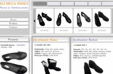 www.ams-pantofi.ro