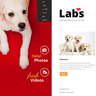 template | Animals & Pets | ID: 1455