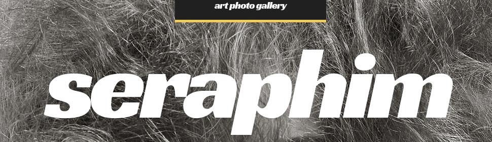 template | Art & Photography | ID: 1641