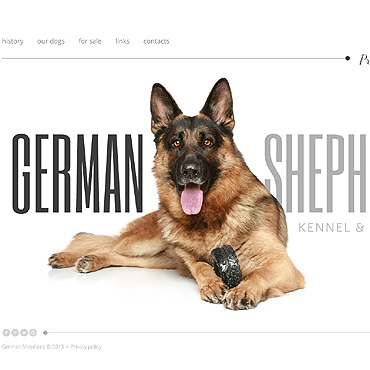 template | Animals & Pets | ID: 1685