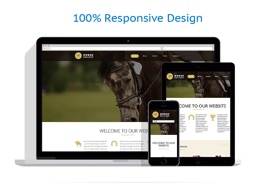 Sabloane responsive de website | Animale | ID: 1934