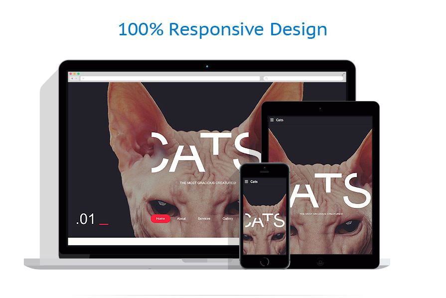 Sabloane responsive de website | Animale | ID: 3025
