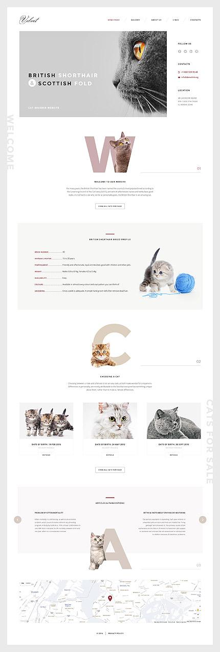 template | Animals & Pets | ID: 3043