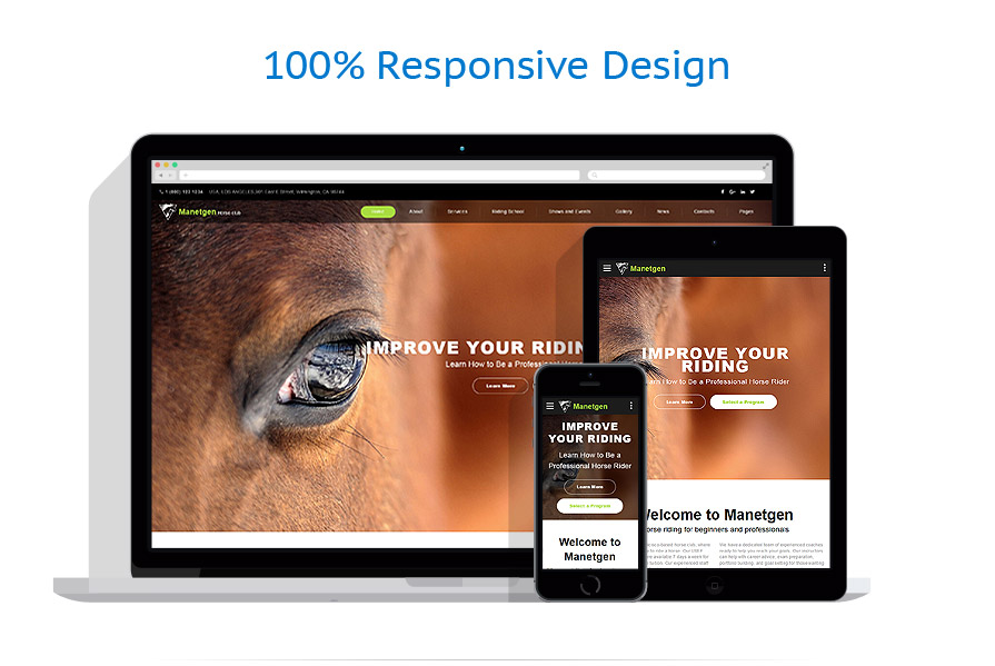 Sabloane responsive de website | Animale | ID: 3186