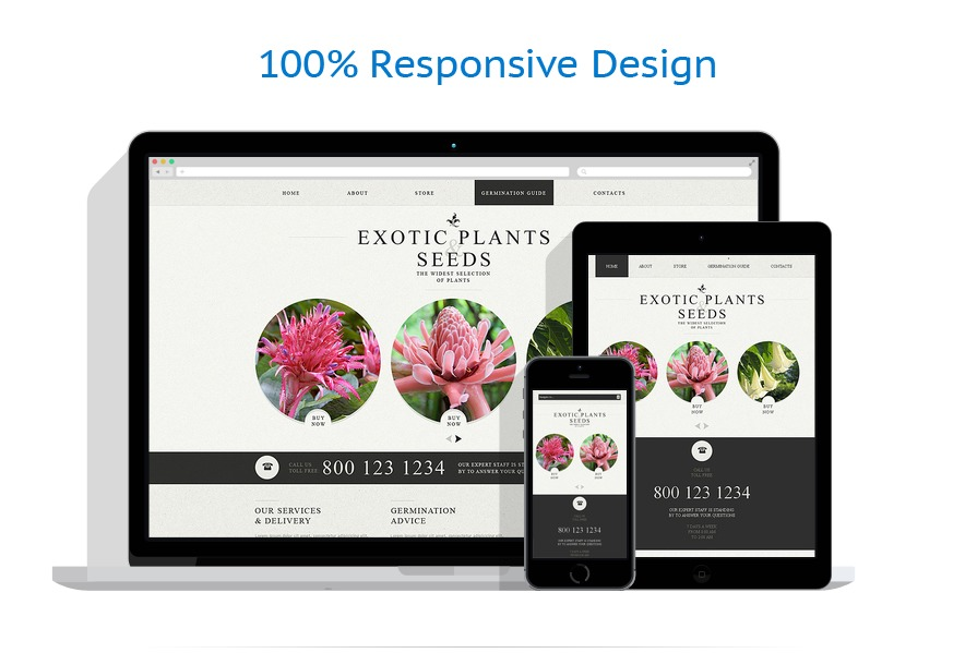 Sablon responsive de | Design Exterior | ID: 443