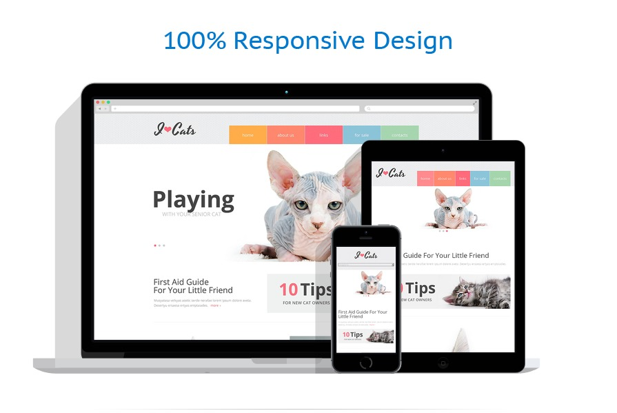 Sabloane responsive de website | Animale | ID: 468