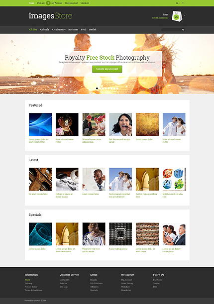 template | Art & Photography